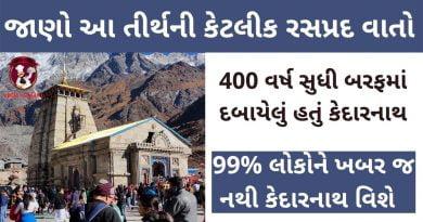 kedarnath history in gujarati